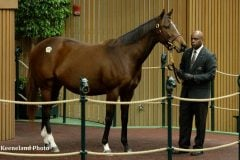 Joyfully, in foal to American Pharoah, led the second session at $575,000
