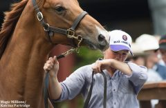 Jamee Ryder wipes away tears after the horse she helped prep sold for $600,000 AUD