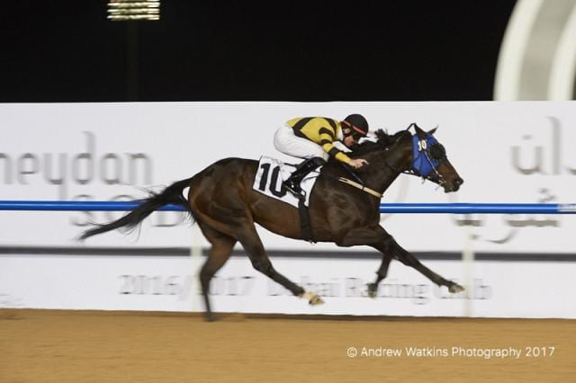 Korea was represented by its first Dubai World Cup Carnival winner when Main Stay captured the District One Handicap Jan. 19
