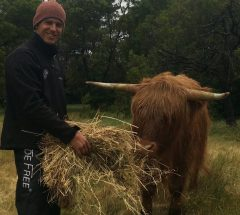 Symons with Hamish the Highland Cow