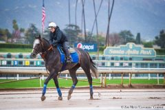 Arrogate received special permission to jog over Santa Anita's muddy main track on Saturday morning