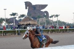 "California Chrome was ""sensational"" in his final workout before the Pegasus World Cup."