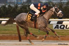 El Areeb dominates the Jerome Stakes