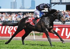 Waterhouse trainee and Melbourne Cup winner Fiorente