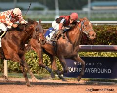 Hy Riverside wins the Sunshine Millions Classic