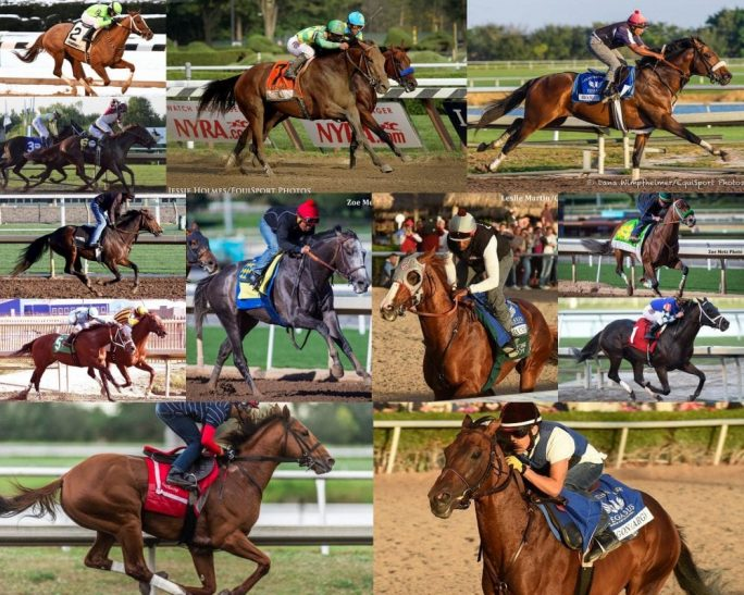 The field for the inaugural $12 million Pegasus World Cup