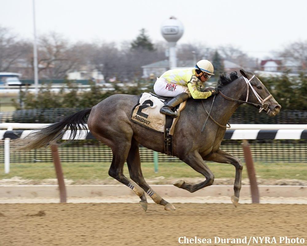 Sunny Ridge Kicks Clear In Jazil Horse Racing News