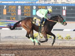 Conquest Mo Money wins the Mine That Bird Derby at Sunland Park