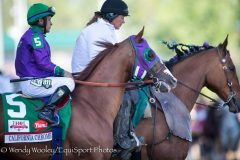 Perfect Drift and Goetz take California Chrome to the post in the 2014 Kentucky Derby