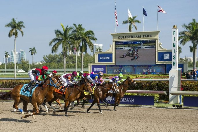 Racing_main_track_past_toteboard_on_PegasusDay_GulfstreamPark_28Jan2017