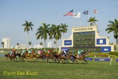 Racing_turf_course_past_toteboard_on_PegasusDay_GulfstreamPark_28Jan2017