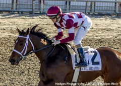 Farrell, a daughter of Malibu Moon, wins the G2 Rachel Alexandra Stakes at Fair Grounds