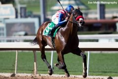 Iliad, a 3-year-old son of Ghostzapper, wins the San Vicente