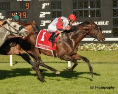 Inspector Lynley wins the Tampa Bay Stakes