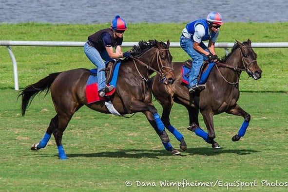 Miss Temple City breezes at Palm Meadows on Feb. 18