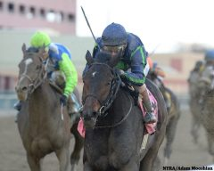 No Dozing (left) rallied late but had to settle for second behind Mo Town in the G2 Remsen