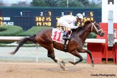 One Liner shown winning the Southwest Stakes