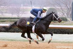 Uncontested breezes at Oaklawn on Feb. 5
