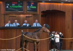 Hip number 360, a Congrats filly, was one of five horses to bring $1 million or more at OBS March