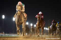 Arrogate won the 2017 Dubai World Cup over Gun Runner