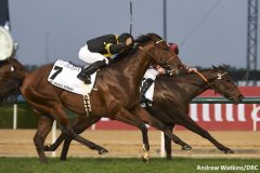 Long on Value, outside, finished a close second to The Right Man in the Al Quoz Sprint in Dubai