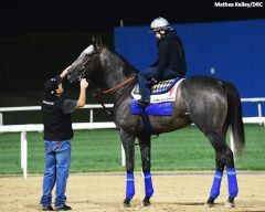 Arrogate at Meydan the morning of March 23