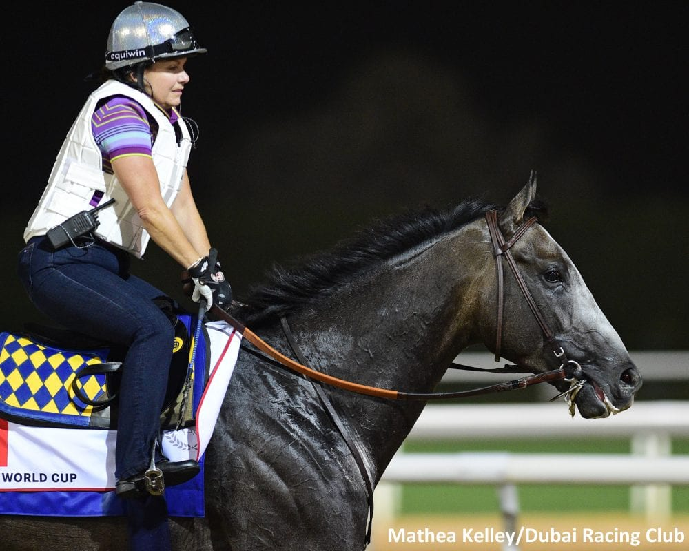 Dana Barnes And Her Deal With Dubai World Cup Favorite