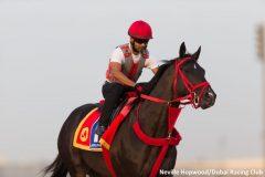 Sharp Azteca training in Dubai