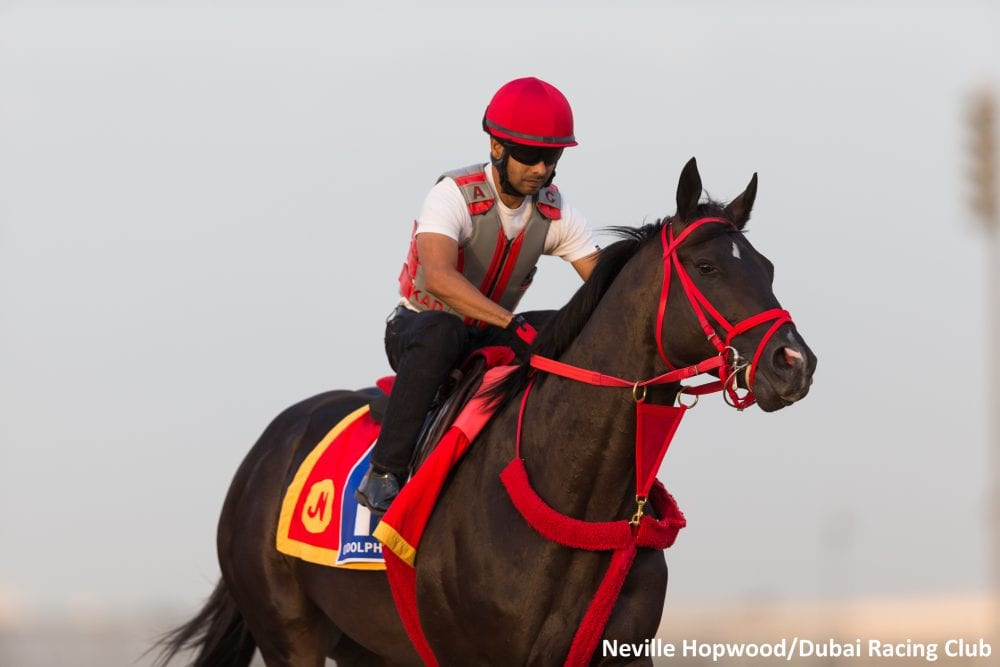Sharp Azteca training in Dubai