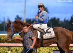 Fountain of Youth victor Gunnevera and jockey Javier Castellano