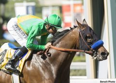 Cheyenne Stable's Mastery and jockey Mike Smith win the Grade 2 San Felipe Stakes