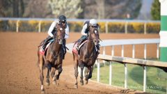 McCraken (on rail) works in company with Brian Hernandez up at Keeneland on March 27.