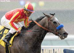 Pretty N Cool and jockey Martin Garcia win the Grade III, $100,000 Las Flores Stakes, Sunday, March 5, 2017 at Santa Anita Park, Arcadia CA.© BENOIT PHOTO
