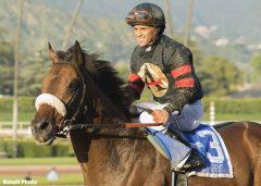 Stronach Stables' Shaman Ghost and jockey Javier Castellano win the Grade I $750,000 Santa Anita Handicap