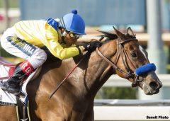 Vale Dori and jockey Rafael Bejarano win the Grade I, $400,000 Santa Margarita Stakes