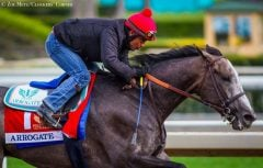 Arrogate breezes at Santa Anita on March 5