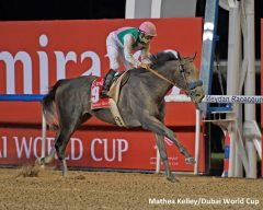 Arrogate's triumph in the Dubai World Cup made him the richest North American racehorse in history