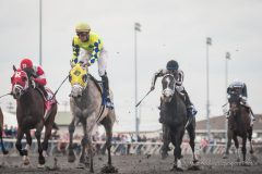 Fast and Accurate (gray) will be a late nominee to the Triple Crown, making him eligible for the Kentucky Derby