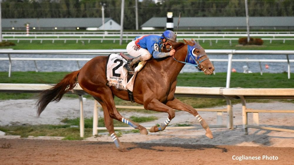 Bloodlines: Sharing The Wealth With Dialed In - Horse ...
