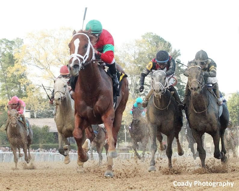 Malagacy wins the Rebel Stakes over Sonneteer, far right, and Untrapped, one from right. Petrov, the gray visible on the outside of Malagacy, finished fourth.