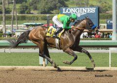Cheyenne Stable's Mastery and jockey Mike Smith win the Grade II $400,000 San Felipe Stakes Saturday, March 11, 2017 at Santa Anita Park, Arcadia, CA
