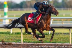 McCraken worked at Palm Meadows on Mar. 11