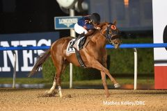 Mind Your Biscuits won the Dubai Golden Shaheen by three lengths