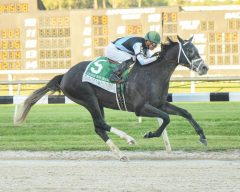 Tapwrit wins the Tampa Bay Derby