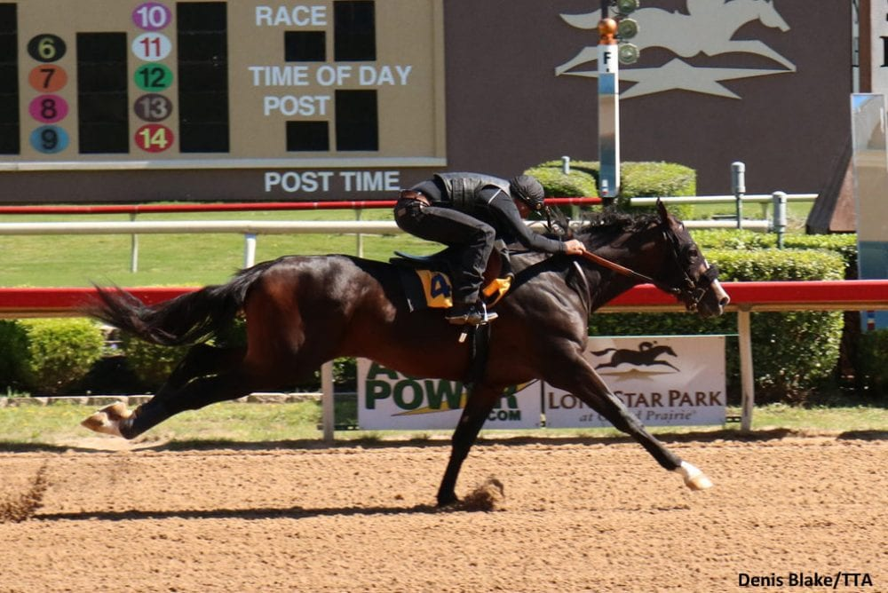 Tale Of The Cat Colt Leads Strong Gains In Texas 2 Year