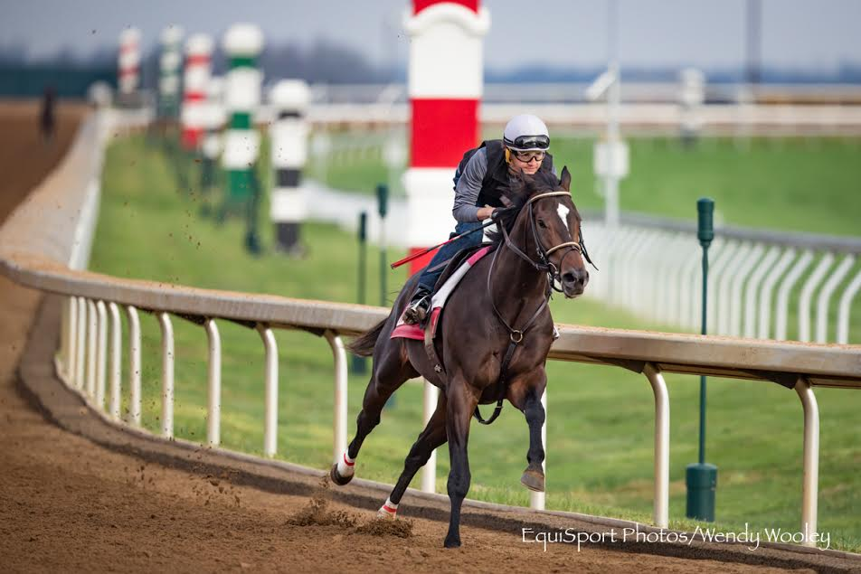 Ky Derby Notes Mccraken State Of Honor Settle In At