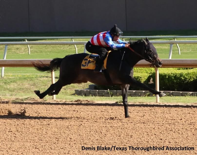 2 lick definition Thoroughbred minute training