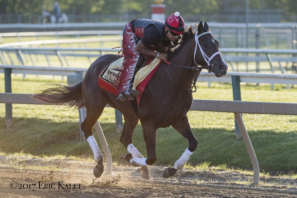Preakness Notes May 17 Classic Empire In Tip Top Shape