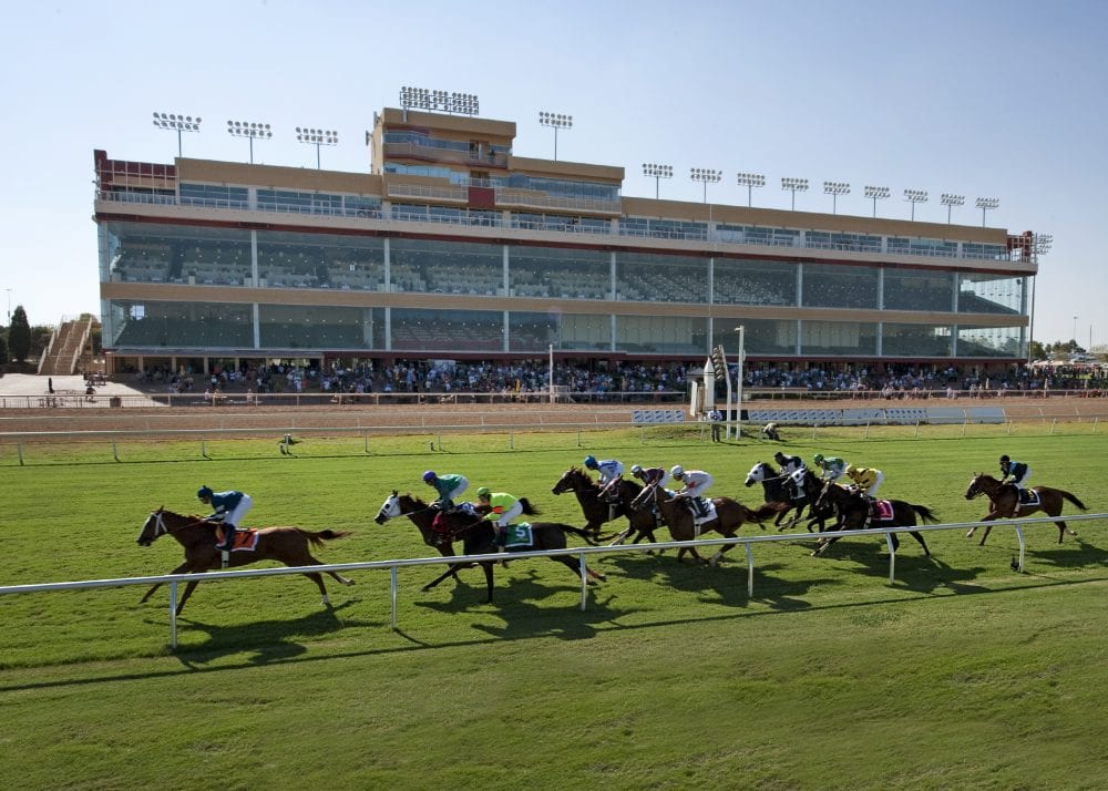 Large Fields Nine Race Card Set For Remington Park S