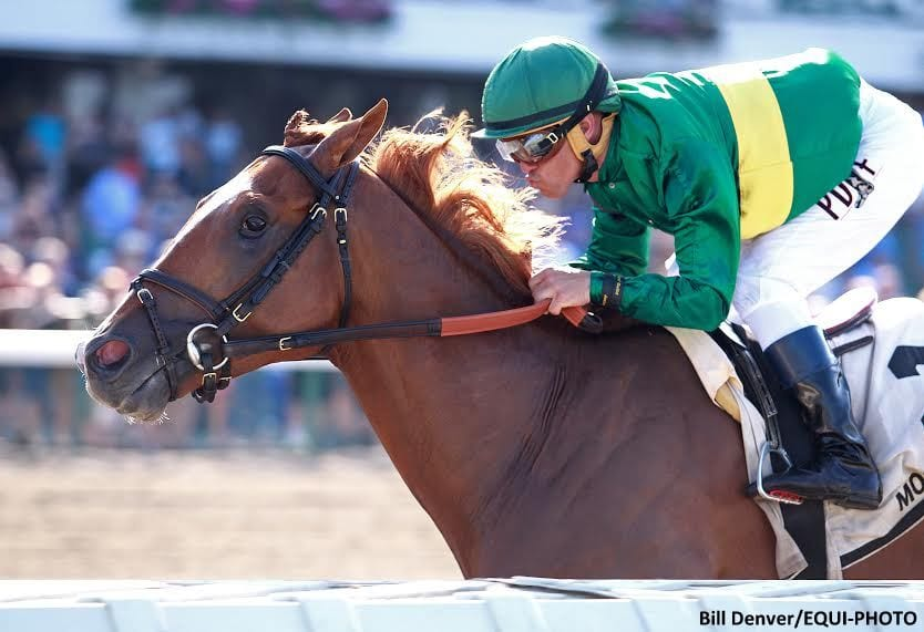 Timeline Now 4 For 4 After Pegasus Score Horse Racing News Paulick Report